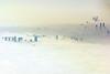 Fog rolls into Abu Dhabi