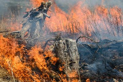 Controlled Prairie Burn