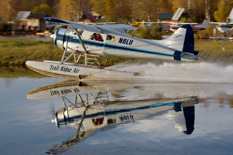 N6LU | de Havilland Canada DHC-2 Mk1 | Trail Ridge Air