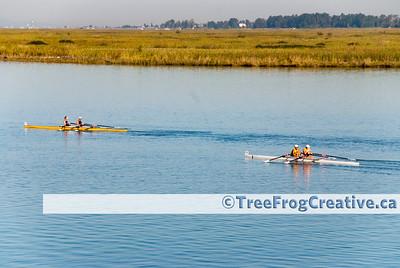 Delta Rowers