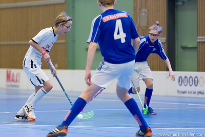 06/01/17 Sibben cup Floda IBK P03 match 3 MW2252
