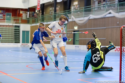 06/01/17 Sibben cup Floda IBK P03 match 3 MW2166