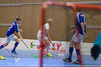 06/01/17 Sibben cup Floda IBK P03 match 3 MW2177
