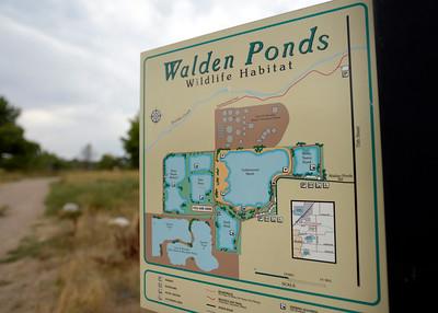 Walden Ponds Trail