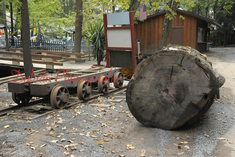 This is the 220-year-log after it was moved.