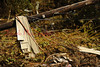 Debris wrapped around a pole in Charmund, just west of Orangeville.