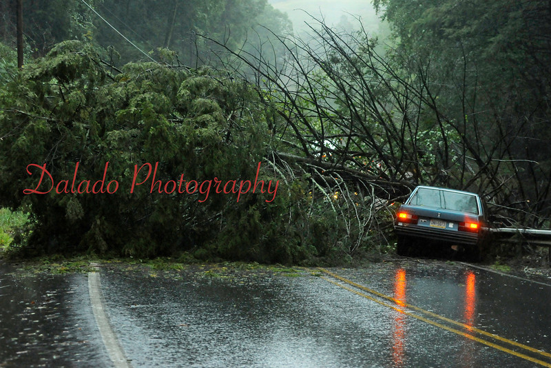 Sept. 07 (Tues.) This vehicle skidded into a guard rail and fallen tree on Route 487, in Catawissa Township, just west of the intersection with Route 42. The operator, William Lynn, was trapped in his vehicle for 20 minutes, but was OK.