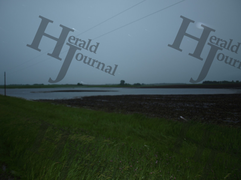 Flooded field near McLeod County Road 1 and 150th St. June 19, 2014