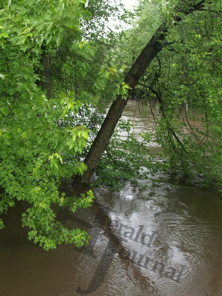 Crow River at McLeod County Road 9.