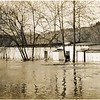 1913 Flood/James River near Lynchburg X (06575)