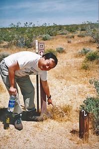 3/24/98 Animal Loop trail. Desert Tortoise Natural Area, Kern County, CA