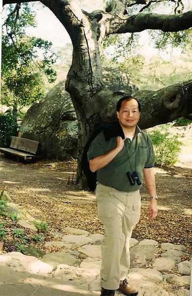 1/13/01 Gil in front of a Coast Live Oak (Quercus agrifolia). Santa Barbara Botanic Garden, Santa Barbara County, CA