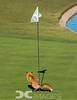 She Must Have Three-Putted!