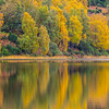 Golden Pond 2