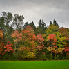 Fall Color on a Cloudy Day