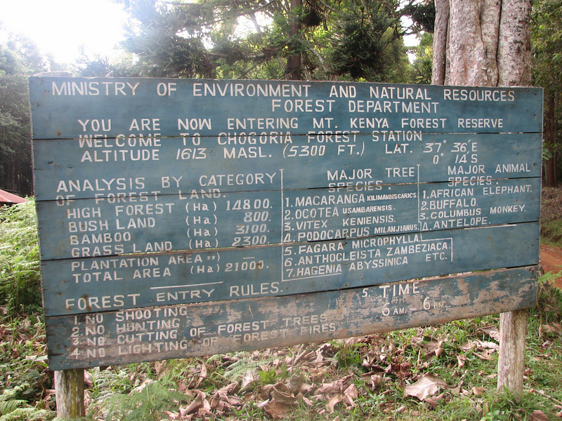 Forest Gate 1735m, Mount Kenya National Park