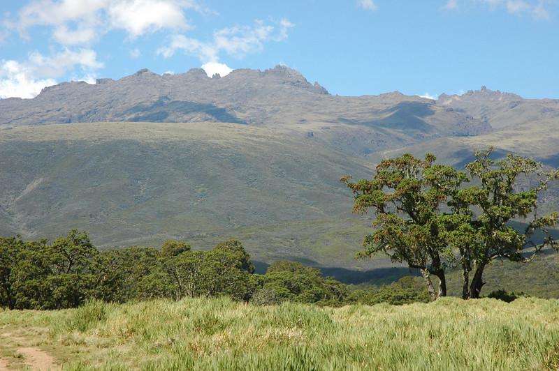 Chogoria Park Gate 2995m Mnt. Kenya National Park