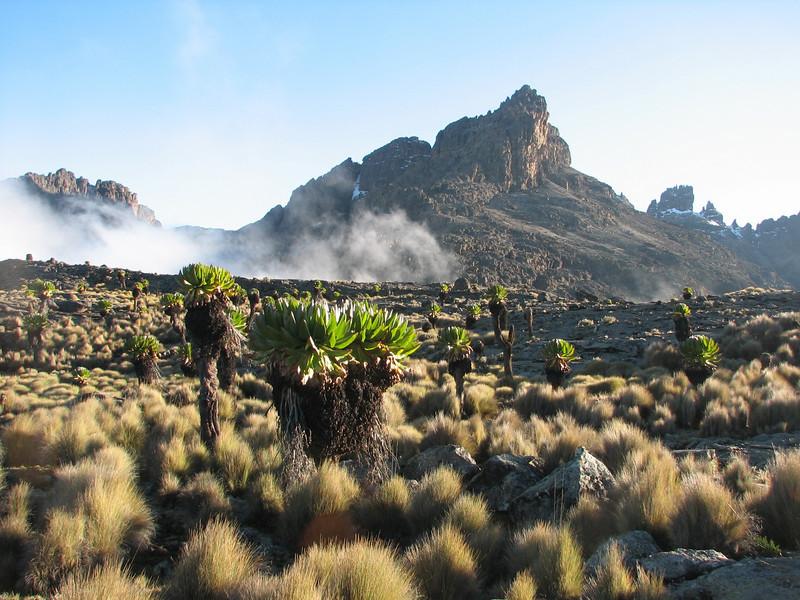 Mount Kenya mountains