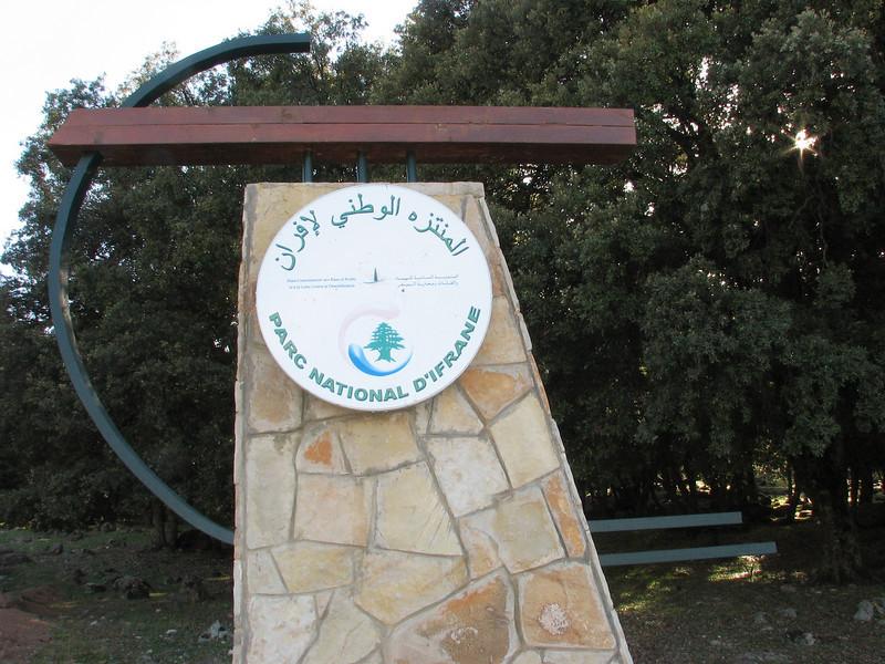 National Park D'ifrane, Protected area, Foret de Cedres, Middle Atlas, near Azrou (Fes - Imouzzer-Kandar - Ifrane - Azrou -(foret de Cedrus)- Ain-Leuh - El-Hajeb - Boufakrane)