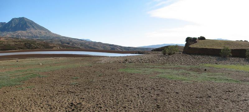 habitat of Bubulcus ibis, Cattle Egret (NL:koereiger) (Tetouan - Dar-Ben-Karriche-El-Bari - Zinat - Chefchaouen)