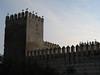 Ciconia ciconia (NL: Ooievaar) on castle of Fes