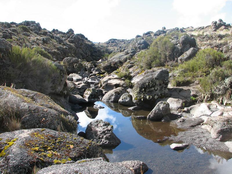 Shira 1-Shira 2 Camp,Shira plateau Kilimanjaro 3891m