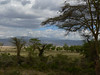 landscape Lake Manyara National Park