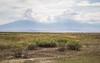 Armash Lakes, Ararat