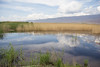 Armash Lakes,