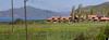 Tufenkian Heritage Hotel at Sevan Lake