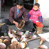 edible bamboo shoots, Hongcun, (Unesco World Heritage Site)