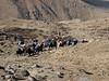 Kharta Camp 3710m-Shao La Basic Camp 4662m
