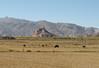 Gyantse Dzong, 14th-century, Gyangtse 4032m-Latse 4050m