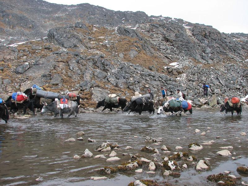 Shao La Basic Camp 4253m - Shao La 4904m-Djaksim Camp 4053m