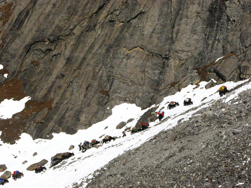 Ascending Langma La 5365m, Langma La High Camp 5098m-River Camp 4941m