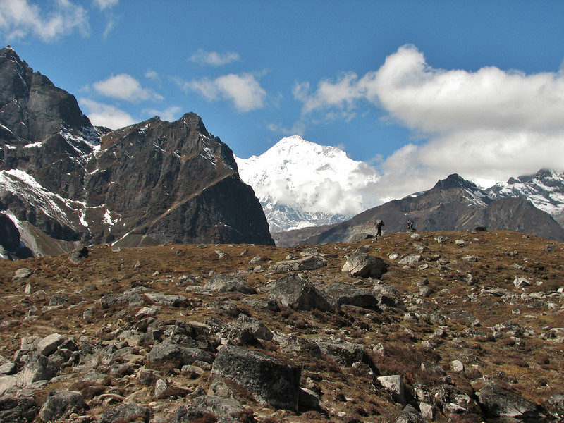 Gentiana cf. micans and Gentiana ornata, Djaksim Camp 4053m-Bahtang Glacier-Camp 4379m