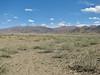 Tibetan plateau, habitat of Oxytropis cf. glacialis, Gyangtse 4032m-Latse 4050m