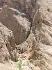 Rocky limestone habitat