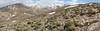habitat of Acantholimon spec.  Acantholimon zone (~19km SW of Aligudarz)