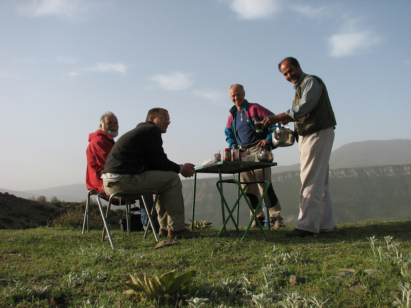 Harrie de Vries, KeesJan van Zwienen, Marijn van den Brink and Mohammad Rostami (botanising in the Elburz mountains, North Iran April/May 2009)