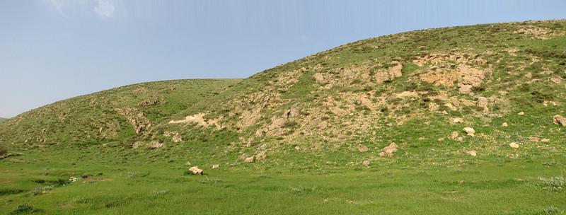 landscape, habitat (Iran, Azarbayjan-e-Gharbi, pass 2300m Ziveh-Kaveh near border Turkey - Iraq)(23)