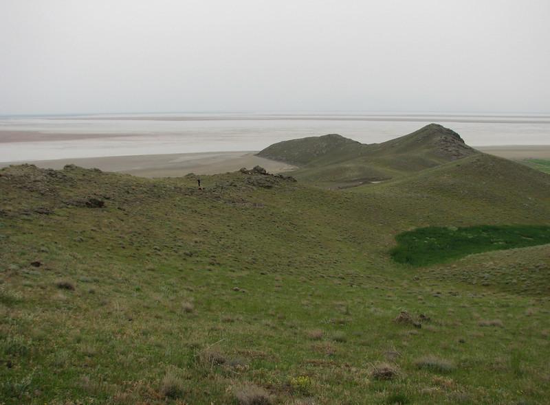 habitat of Iris barnumae (Iran, Azarbayjan-e-Gharqi, mountains near  border of Orumieh saltlake, 8km S of Ag Gonbad 1410m)(21)