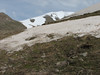 Colchicum szovitsii, melting snow habitat (Iran, Azarbayjan-e-Gharqi, Sahand mountains)(20)