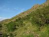 habitat (Iran, Azarbayjan-e-Gharqi, mountains NE of Mardanqayem, border Iran-Armenia (16)