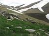 Gentiana verna ssp. pontica (Iran, Azarbayjan-e-Gharqi, Sahand mountains)(20)