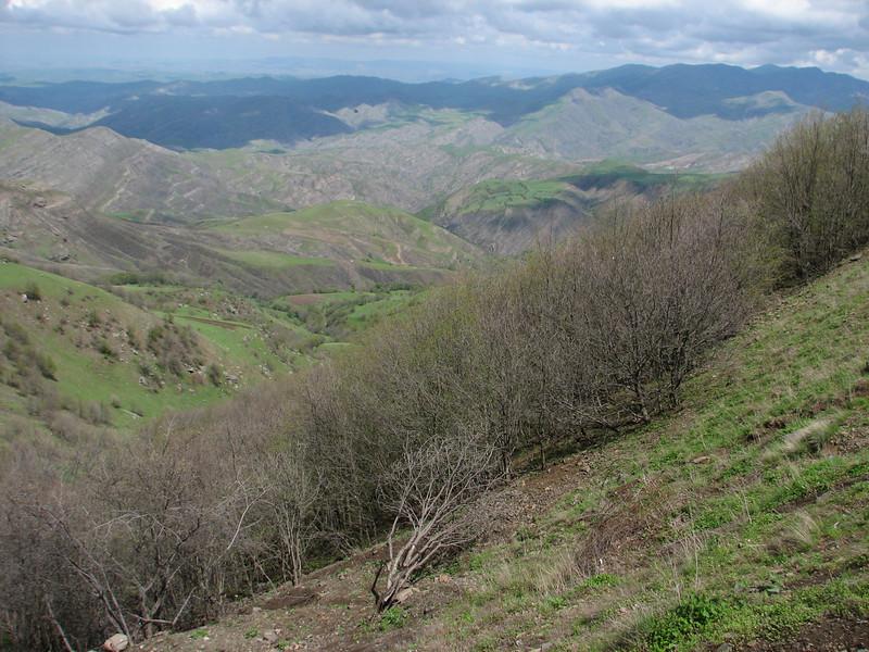 shrubs and trees habitat (Iran, Azarbayjan-e-Gharqi, mountains near the Kalan pass 2100m, 30km N of Kalibar (15)