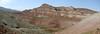 desertlike habitats in the Sedan mountains (Iran, Qazvin, Sendan mountains, near Gilavan, W of Sefid Rud Reservoir (40)