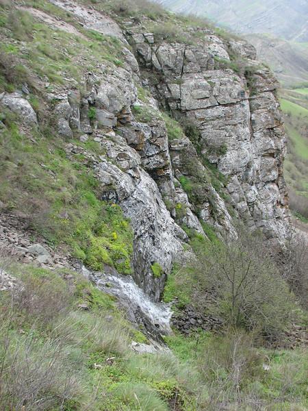 an overview of the habitat (Iran, Azarbayjan-e-Gharqi, mountains near the Kalan pass 2100m, 30km N of Kalibar (15)