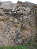 steep limestone rocks: habitat of Dionysia tapetodes