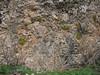 steep limestone rocks: habitat of Dionysia tapetodes